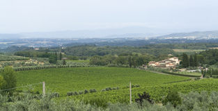 Chianti in Tuscany Royalty Free Stock Photo