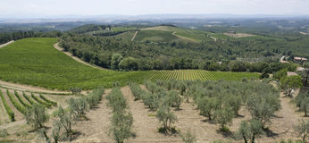 Chianti in Tuscany Stock Photography