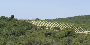 Chianti in Tuscany Stock Image