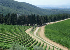 Chianti in Tuscany Stock Images