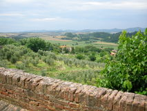 Chianti Tuscany vineyards. A view over the wall to sangiovese chianti vineyards at harvestime Tuscany stock photos