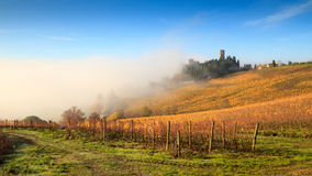 Chianti vineyard landscape in autumn with fog, Passignano. Chianti vineyard landscape in autumn with fog , Abbey of Passignano, Tavarnelle Val di Pesa, Florence royalty free stock images