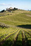 Chianti vineyard slopes. Chianti vineyard in a gentle slope with road and traditional farmhouse in the background Royalty Free Stock Photo