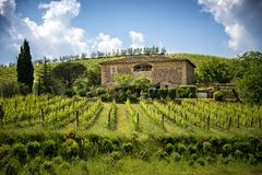 Chianti vineyards in Tuscany, Italy. The Chianti Hills also known as the Chianti Mountains are a short mountain range about 20 km straddling the provinces of royalty free stock photography