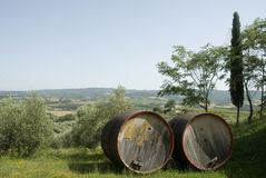 Chianti-wine in Tuscany Royalty Free Stock Images