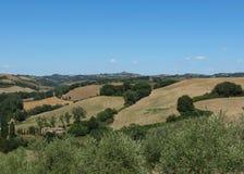 Chiantishire hills landscape Royalty Free Stock Images
