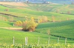 Chiantishire (Toscana) Fotografie Stock Libere da Diritti