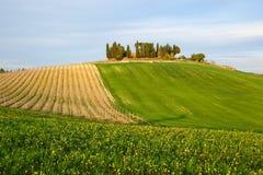 Chiantishire (Toscane) photo stock