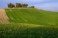 Chiantishire (Toscane) photos stock