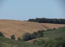 Chiantishire wzgórzy krajobraz Zdjęcia Stock