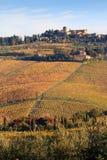 Chiantivingårdlandskap i hösten, Tuscany, Italien Royaltyfri Foto