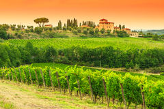 Chiantivingårdlandskap med stenhuset i Tuscany Royaltyfria Bilder