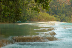Chiapas. Agua Azul waterfalls, Chiapas, Mexico Royalty Free Stock Photos