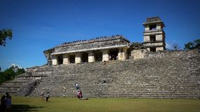 Tourists admiring The Palace in the Palenque archeological zone. CHIAPAS, MEX-CIRCA AUGUST 2018: Tourists admiring The Palace in the Palenque archeological zone stock footage