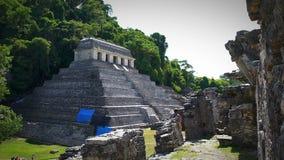 Jaguar's Temple in the Palenque archeological zone. CHIAPAS, MEX-CIRCA AUGUST 2018 (TRUCK LEFT-FULL SHOT): Jaguar's Temple in the Palenque stock video