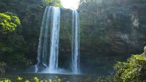 Chiapas Mexico Jungle Waterfall stock video