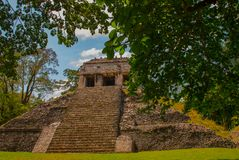 Chiapas, Mexico. Palenque. The pyramid on the background of green tree leaves. Landscape in the ancient city of Maya.  Stock Image