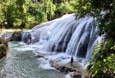 Chiapas Waterfall. Image of Roberto Barrios Waterfall at Chiapas Mexico royalty free stock image