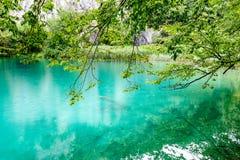 Chiara acqua dei laghi Plitvice, Croazia Fotografie Stock Libere da Diritti
