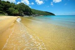 Chiara spiaggia meravigliosa dell'acqua Fotografie Stock