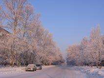Chiara via della città del paesaggio di inverno a Novosibirsk con neve bianca sugli alberi del gelo immagine stock libera da diritti