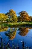 Chiare riflessioni di autunno Immagini Stock Libere da Diritti