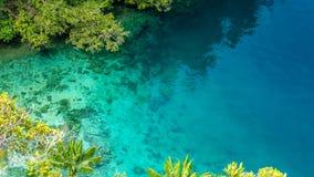 Chiari acqua blu e corallo in mangrovia vicino all'alloggio presso famiglie di Warikaf, baia di Kabui, passaggio Gam Island, Papu Fotografie Stock