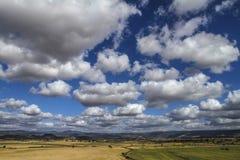 Chiaro cielo con i colori naturali delle nuvole bianche Mediterranee intense e del blu su una pianura di vegetazione sarda tipica fotografie stock