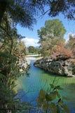 Chiaro fiume pulito, Nuova Zelanda immagine stock libera da diritti