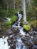Chiaro lago nella foresta immagini stock