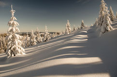 Chiaroscuros Στοκ φωτογραφία με δικαίωμα ελεύθερης χρήσης