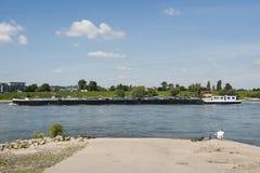 Chiatta sul fiume il Reno fotografia stock