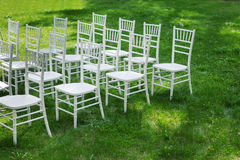 Chiavari-Stühle auf Gras Stockbilder