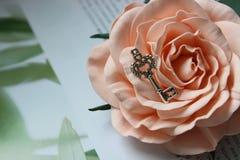 Chiave d'argento d'annata sul germoglio rosa, retro stile d'annata, fuoco selettivo immagini stock libere da diritti