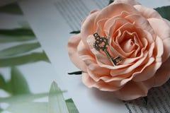 Chiave d'argento d'annata sul germoglio rosa, retro stile d'annata, fuoco selettivo fotografie stock libere da diritti