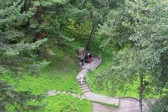 Chiave della primavera con acqua pulita ed utile, situata nella località di soggiorno Belokurikha del ceppo di Dunyashkin in Alta Immagine Stock Libera da Diritti