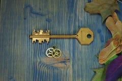 Chiave dorata d'annata accanto agli ingranaggi ed alle foglie di autunno immagine stock libera da diritti
