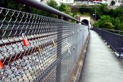 Chiave primaria alla caduta del Reno in Svizzera Immagine Stock Libera da Diritti