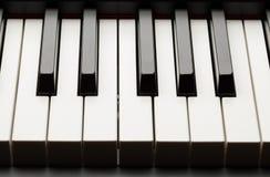 Chiavi dell'ebano e dell'avorio del pianoforte a coda Immagini Stock Libere da Diritti