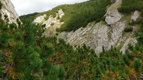 Chiavi di Horoabei, montagne di Bucegi Immagine Stock