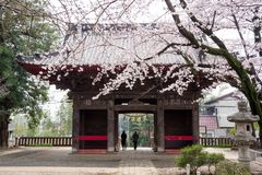 chiba Temple stock images
