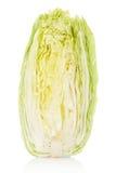 Chicória, salada de Milão Fotografia de Stock