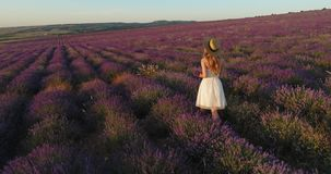 Chic girl comes with a bouquet of lavender on the field of lavender at sunset