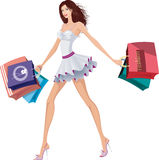Chic lady with shopping bags Stock Photos