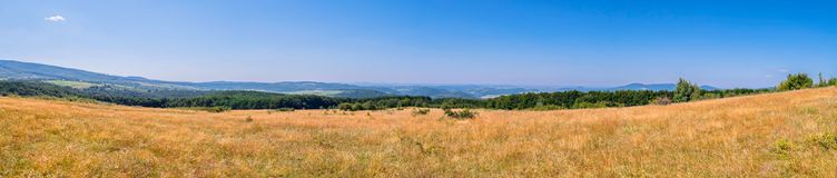 A chic panorama of the mountain valleys with plains with dried grass with green forests and mountain ranges visible in. The distance on the horizon line. . For stock photo