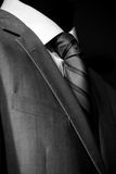 Chic and stylish suit Royalty Free Stock Photo