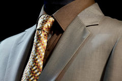 Chic and stylish suit Stock Photography