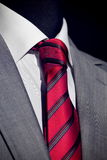 Chic and stylish suit Stock Photos