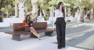 Chic young woman chatting on her mobile. Chic young woman standing in an urban park chatting on her mobile phone with a second woman in the background sitting on stock video footage