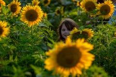 Chica joven alegre de la belleza con el girasol que disfruta de la naturaleza y que ríe en campo del girasol del verano Sunflare, fotografía de archivo libre de regalías